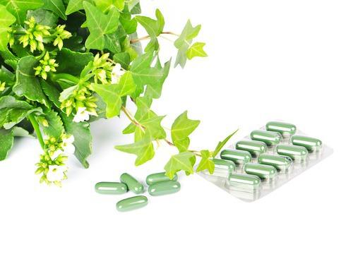 Таблетки из трав своими руками