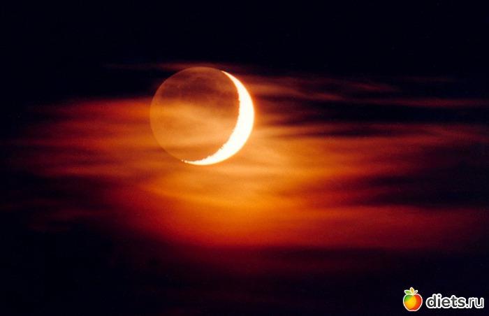 Муравей или Стрекоза.  Четвертое новолуние придется на пятницу 10 мая и совпадет с кольцевым затмением Солнца.