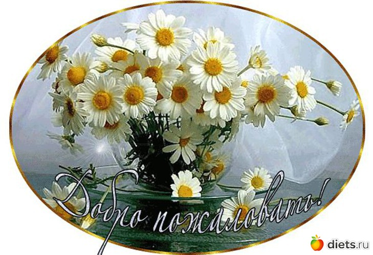 http://www.diets.ru/data/cache/2012apr/11/19/714767_53361-550x500.jpg