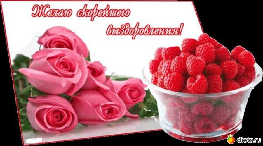 http://www.diets.ru/data/cache/2012feb/17/08/614584_37915-550x500.jpg