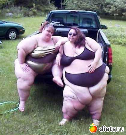 funny pictures of fat women  503415