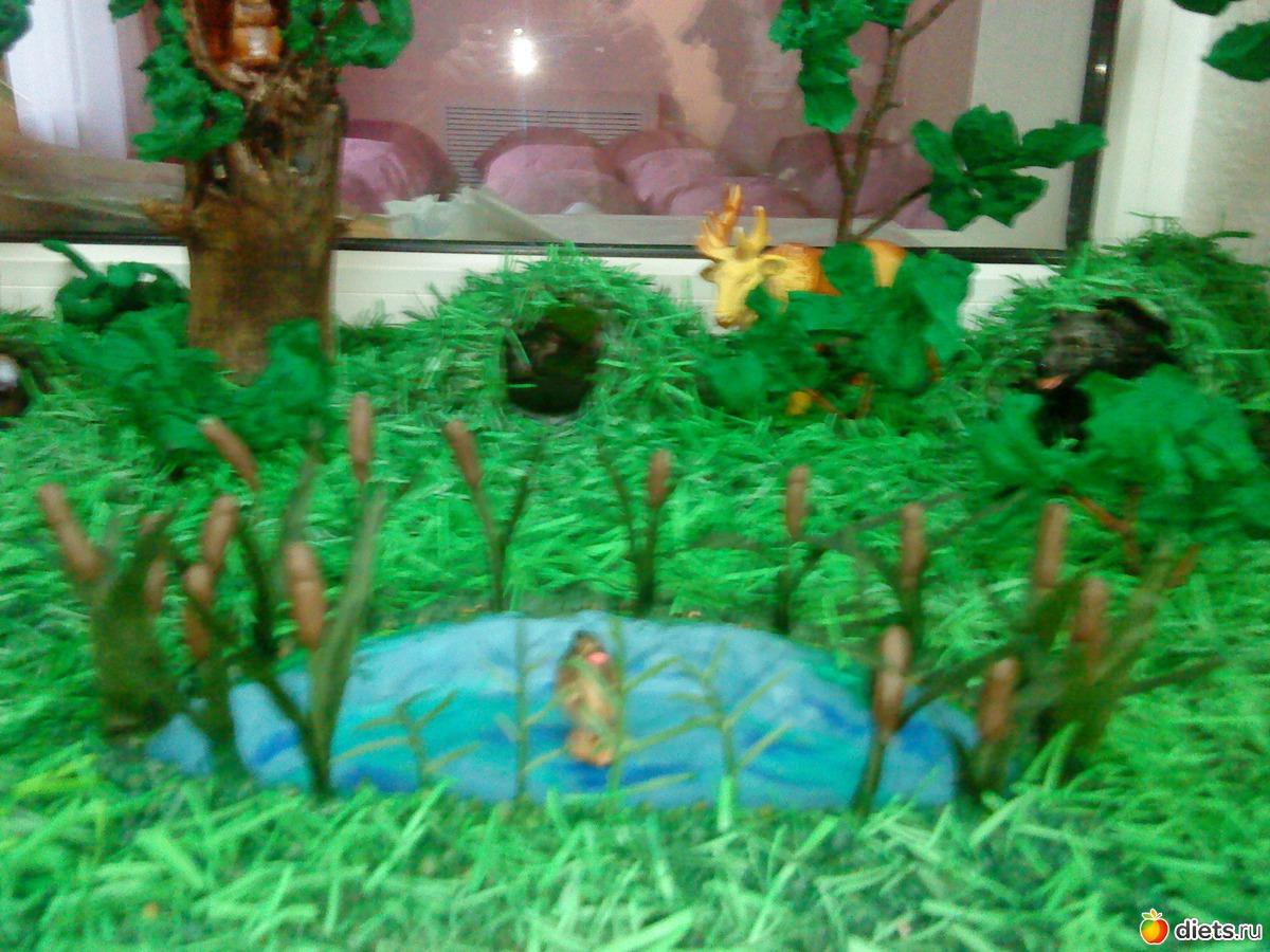 Макет животные леса для детского сада