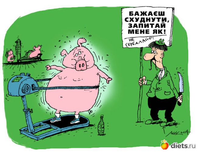 программа о похудении на стс