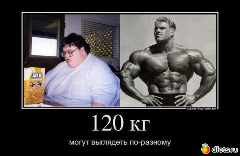 http://www.diets.ru/data/cache/2013feb/14/18/1256199_88652-550x500.jpg