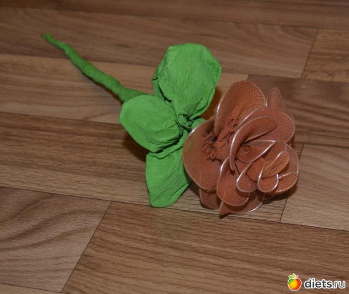 """Как найти применение капроновым колготкам... или... как сделать цветочки своими руками: Конкурс """"Личный опыт"""": Группы - diets.ru"""