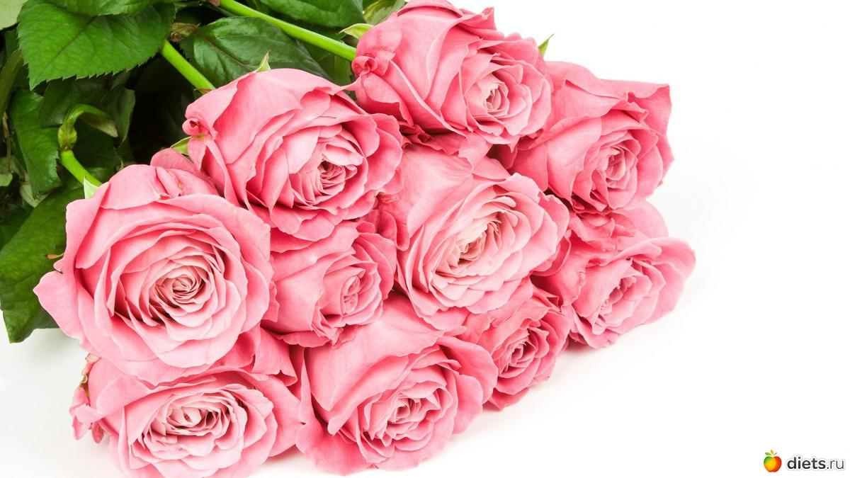 Большие картинки цветов 4