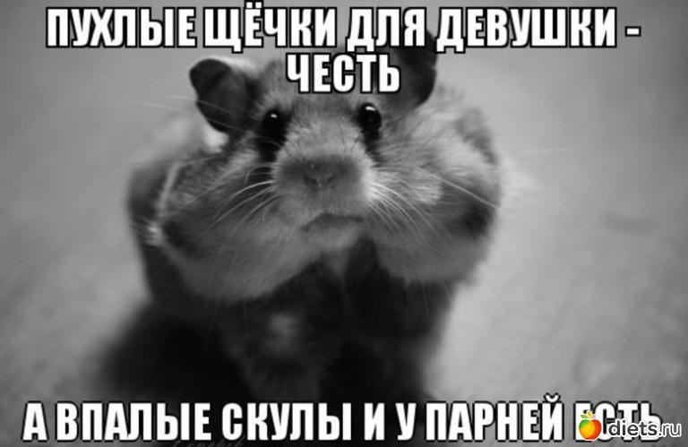 XV Международный конкурс имени П. И. Чайковского