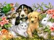Домашние животные и наше самочувствие