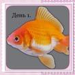 сегодня первый день                рыбка