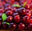 Лесные витамины