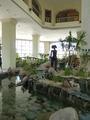 Обитательницы отеля - полые и прекрасные