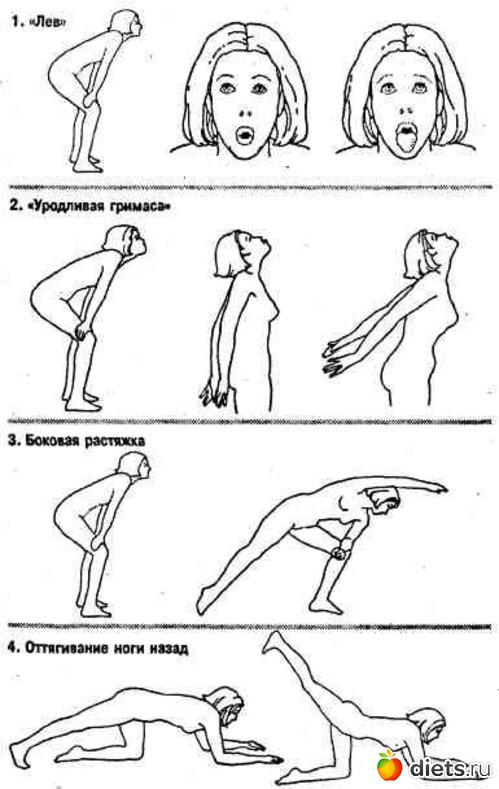 йена бодифлекс упражнения в картинках и с описанием и схемами отметила александра