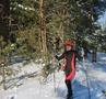 На лыжах обновляя путь