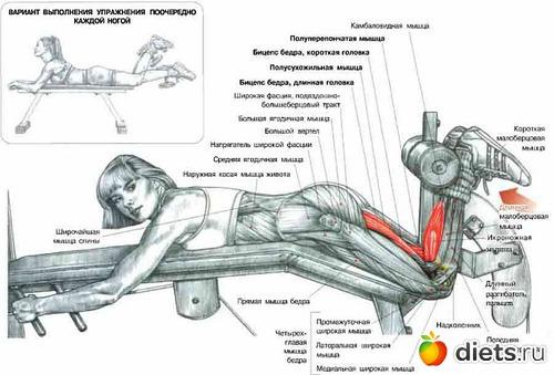 получить жим ногами лежа польза для ягодиц тело его