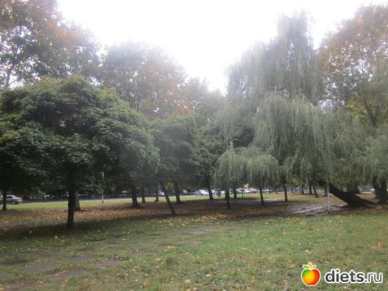 14 октября во Львове, альбом: Осень во Львове,мои поделки