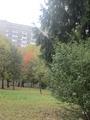14 октября во Львове