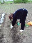 Весна глазами сельской женщины!!! Моя мама на огороде!