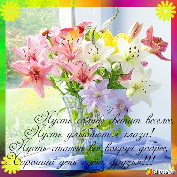 http://www.diets.ru/data/cache/2012aug/04/09/913963_99583-700x500.jpg