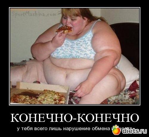 Хватит жрать толстуха картинки