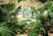 Как создать райский уголок у себя дома?