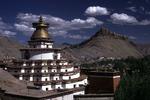 Диета тибетских лам
