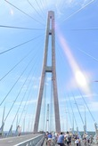 Велопробег. Владивосток-о. Русский. Новый мост