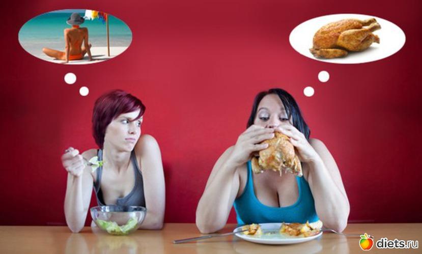 Бесплатные советы как похудет без смс