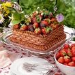 Дыхание природы: ягодка к ягодке. Часть 1