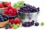 Дыхание природы: ягодка к ягодке. Часть 2