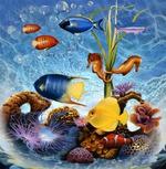 Морская кладовая: мидии