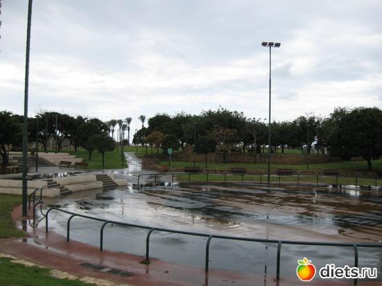 Городской парк зимой после дождя, альбом: Мой город
