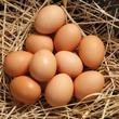 Яйцо: не золотое, а простое
