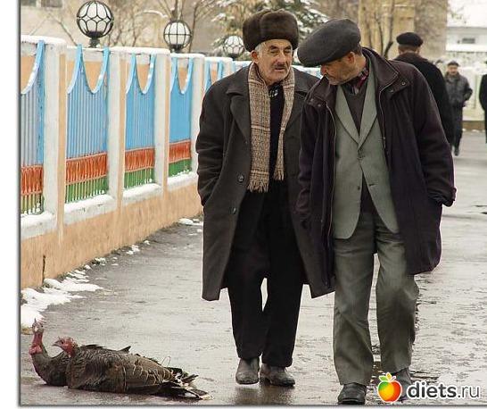 Смешные картинки азербайджанцы
