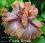 045 - Cocoa Royale
