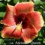 051 - Tah. Arcturus Queen