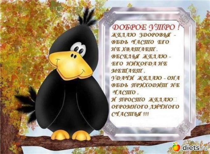 http://www.diets.ru/data/cache/2013dec/07/42/1707317_33046-550x500.jpg