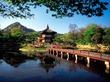 Большая диетическая экскурсия: Корея