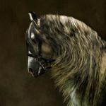 Андалузская лошадь - испанская легенда.
