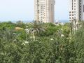 Вид из окна .25 мая 2013