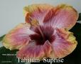 082 - Tahitian Suprise