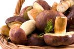ТОП неординарных грибных блюд. Часть 1