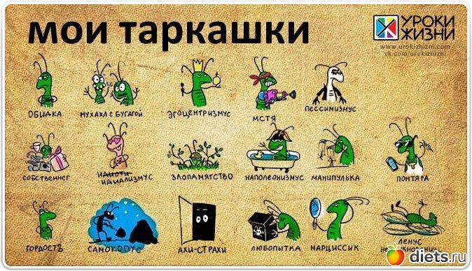 https://www.diets.ru/data/cache/2014aug/19/05/2071587_32171-700x500.jpg