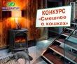 Конкурс «Смешное о кошках» на myJulia.ru