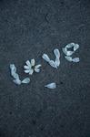 """Учимся любить. Дневник из фильма """"Огнеупорный"""""""