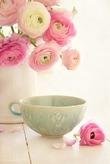 Панакота 2 рецепта (молоко и творог)