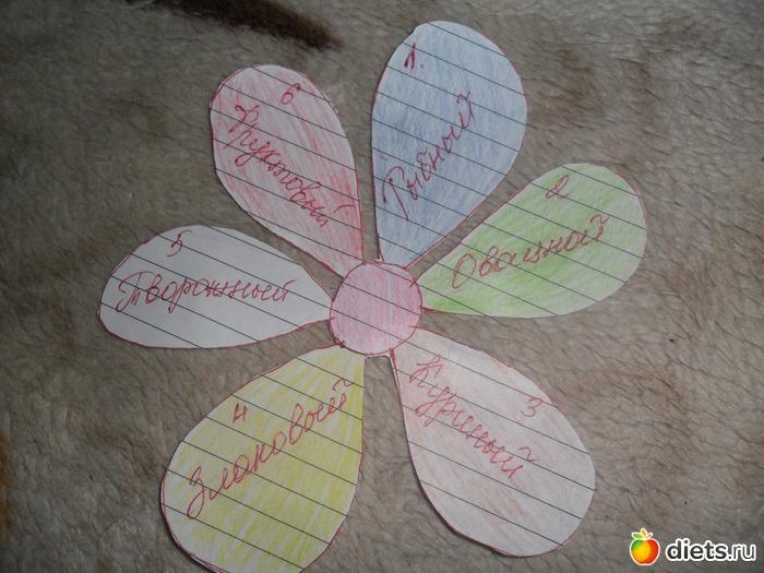Дневник Диеты 6 Лепестков. Диета 6 лепестков: подробное меню питания на каждый день, отзывы и результаты