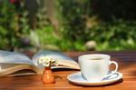 Худеем при помощи напитков: самые полезные виды чая!