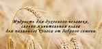 Мудрость духовная.