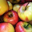 Яблоки - отличный способ сделать фигуру стройной