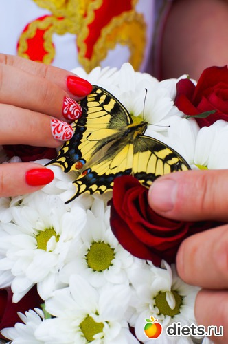 Бабочка на моем свадебном букете